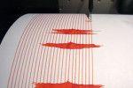 В Кишиневе было зарегистрировано землетрясение амплитудой в 3 балла.